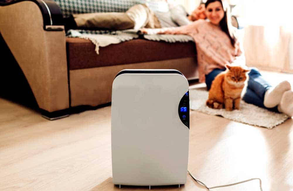 Best quiet dehumidifiers for home